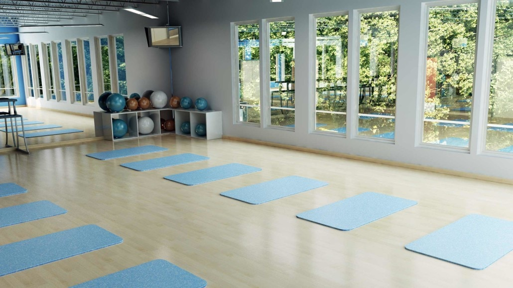 Sun N Fun Yoga and Exercise Room 3D Concept in Sarasota, Florida
