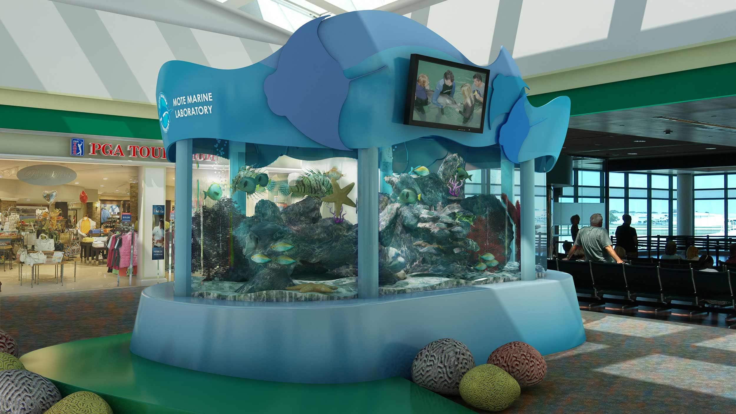 Mote Marine Srq 3d Aquarium Display In Sarasota Florida